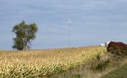Generatore eolico Immagine Stock