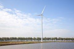 Generatore eolico e fila degli alberi Immagine Stock Libera da Diritti