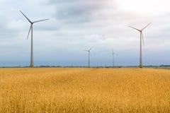 Generatore eolico fra le orecchie dorate dei raccolti di grano Immagine Stock