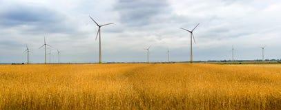Generatore eolico fra le orecchie dorate dei raccolti di grano Fotografie Stock