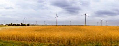 Generatore eolico fra le orecchie dorate dei raccolti di grano Immagini Stock