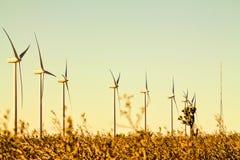Generatore eolico nel deserto Fotografia Stock