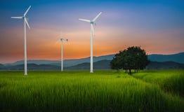 Generatore eolico per energia alternativa nel giacimento verde del riso Immagini Stock Libere da Diritti