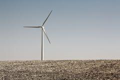 Generatore eolico solo Immagine Stock
