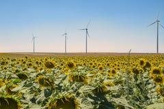 Generatore eolico sotto il cielo blu con il fiore del sole Fotografie Stock Libere da Diritti