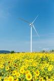 Generatori eolici che stanno nel giacimento del girasole Fotografia Stock Libera da Diritti