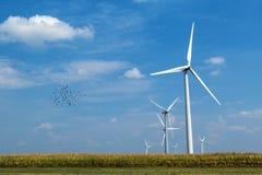 Generatori eolici con gli uccelli Fotografia Stock Libera da Diritti