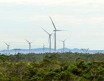Generatori eolici con le nuvole nei precedenti e gli alberi nella priorità alta Fotografia Stock