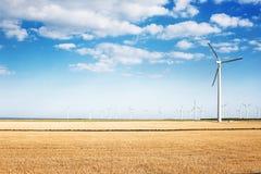 Generatori eolici nel giacimento di grano ad un bello giorno Immagini Stock Libere da Diritti