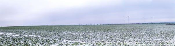 Generatori eolici nel paesaggio di inverno Fotografie Stock