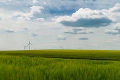 Generatori eolici situati in un giacimento di grano verde fotografia stock libera da diritti