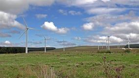 Generatori eolici in un campo in Scozia stock footage