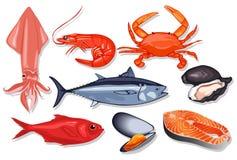 Genere differente di frutti di mare freschi Illustrazione di vettore Fotografie Stock