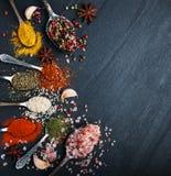 Genere differente di spezie in cucchiai d'annata Immagini Stock