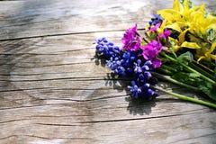 Generi differenti di fiori variopinti su fondo di legno rustico La vista superiore ed il confine progettano, fiore della molla o  fotografie stock libere da diritti