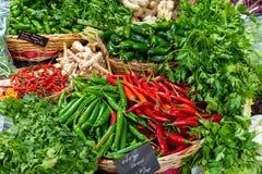 Generi differenti di peperoncini rossi e di erbe immagini stock