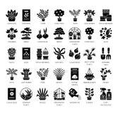 Generi differenti di piante della casa in contenitori Succulente, cactus, bambù, palma, felce Insieme piano dell'icona di vettore illustrazione di stock