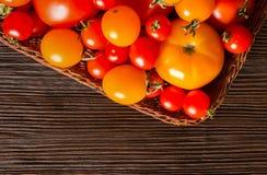 Generi differenti di pomodori freschi Fotografia Stock