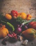 generi differenti di pomodoro, verdure, cipolla, pepe, natura morta dell'aglio, rustica immagini stock libere da diritti