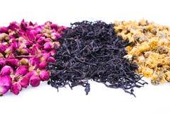 Generi differenti di tè cinese Fotografia Stock