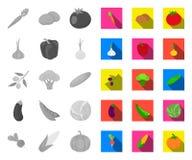 Generi differenti di verdure mono, icone piane nella raccolta stabilita per progettazione Brodo di simbolo di vettore delle vitam royalty illustrazione gratis
