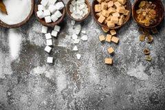 Generi differenti di zucchero in ciotole fotografia stock