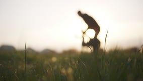 Generi felicemente il lancio su di suo figlio piccolo sulla natura al tempo dell'alba sul movimento lento del backgroung Concetto stock footage