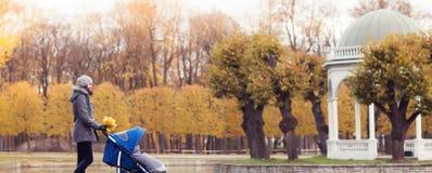 Generi il gioco nel parco con il suo bambino del bambino Mamma e figlio sopra il fondo stagionale di autunno Immagine Stock
