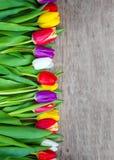 Generi il giorno del ` s del giorno e del biglietto di S. Valentino del ` s, bei tulipani Fotografia Stock Libera da Diritti