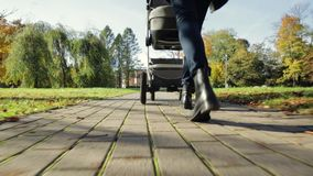Generi la camminata con il bambino-passeggiatore in un parco con gli alberi variopinti in autunno video d archivio