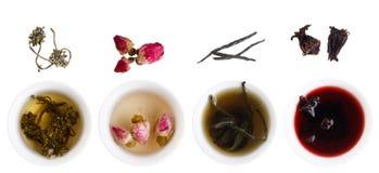 Generi unici di tè Immagine Stock