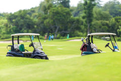 Generic club car golf carts Royalty Free Stock Images