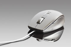 Generic Computer mouse Stock Images