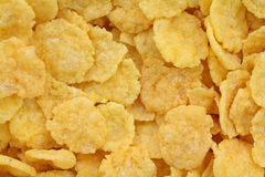 Generic Corn Flakes Close View Royalty Free Stock Image