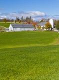 Generic Dairy farm Stock Photos