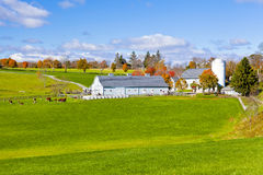 Generic Dairy farm. Generic looking colonial style dairy farm in New England, America Stock Photos