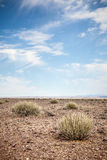 Generic desert scene with blue sky Royalty Free Stock Photo