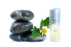 Generic Perfume and Sun Flower on zen stone, white background Stock Image