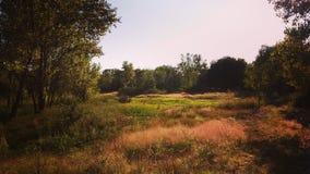 Generisch landschap Royalty-vrije Stock Afbeeldingen
