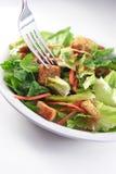Generische dichte omhooggaand van de Salade Royalty-vrije Stock Foto's