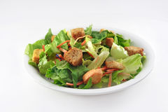 Generische Salade Royalty-vrije Stock Afbeeldingen