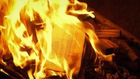 Generisches Dokument brennt oben im Feuer stock footage