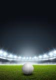 Generisches von Scheinwerfern beleuchtet Stadion mit Kricketball stock abbildung