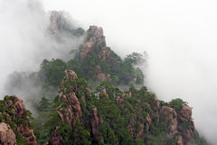 Generiskt kinesiskt landskap - mist som stiger över Huang Shan royaltyfri foto
