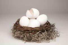 generiskt rede för broken ägg arkivfoton