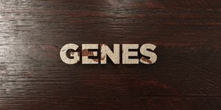 Genes - grungy wooden headline on Maple - 3D rendered royalty free stock image. This image can be used for an online website banner ad or a print postcard royalty free illustration