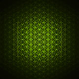 Genesis pattern - the flower of life green Royalty Free Stock Photos