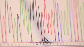 Genetic chromatogram stock video