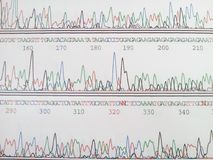 Genetic code royalty free stock images