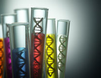 Genetic Code Manipulation. Test tube with dna inside. Concept of manipulation of the genetic code. Clipping path included Royalty Free Stock Photography